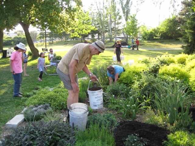 Volunteers mulch trees and work in pollinator garden in Ben Nobleman Park Community Orchard in Toronto (Photo Credit: Susan Poizner)