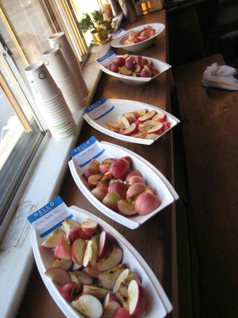 RedFree, NovaMac, George and Prescilla were amongst the apple varieties from Avalon Orchards available for tasting