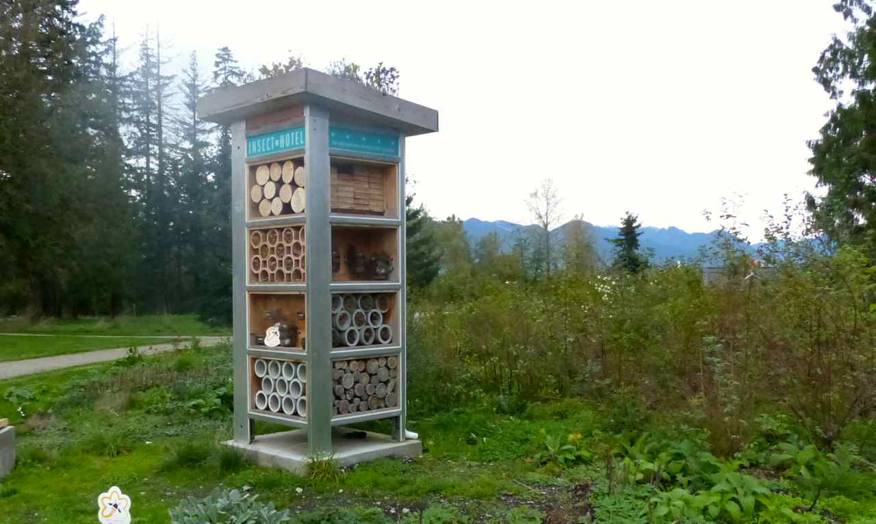 Why every park needs a bee hotel