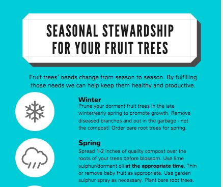 FREE Fruit Tree Stewardship Task Poster