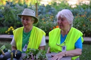 Helen (left) and Helga (right) are two of the Daily Bread orchard volunteers.