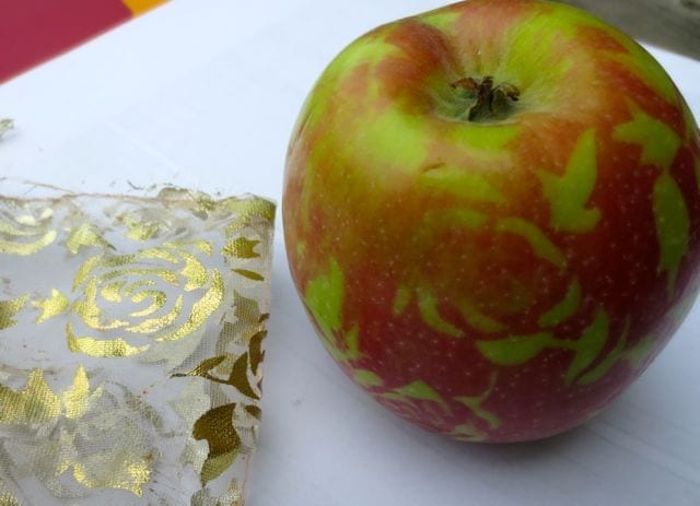 These gauzy gift bags both protected the apples as they grew - and decorated them!