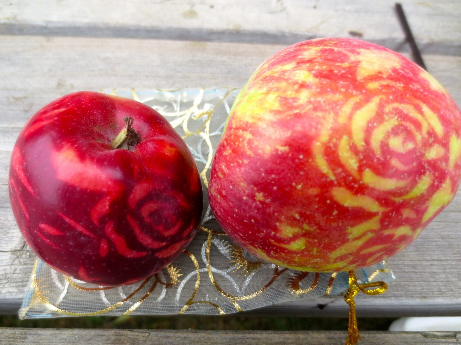 Designer Apples – by Daily Bread Orchard Volunteers