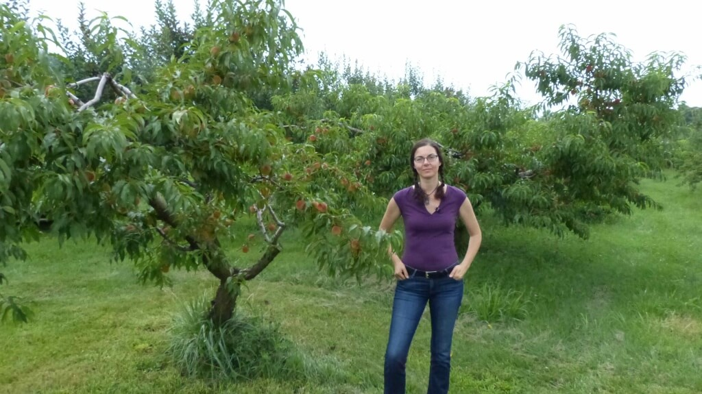 Author Susan Poizner posing with one of the compact and well-pruned trees at the Albermarle Ciderworks. Photo Credit: www.orchardpeople.com.