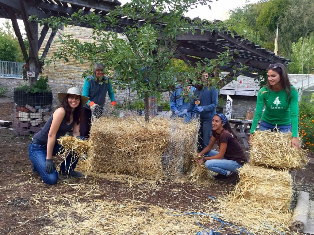 Susan Poizner (kneiling on the left) with the volunteers from Evergreen Brickworks posing with their newly insulated potted tree.