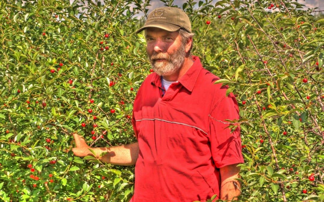 Episode 7: No Room For a Cherry Tree? Try a Cherry Shrub!