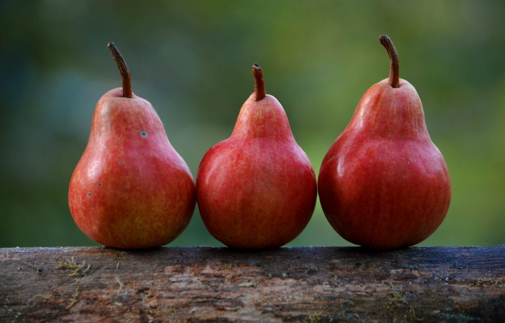Three Perfect Pears - Perhaps grown with the assistance of holistic sprays for fruit trees? (photo credit: Shumilov Ludmila)