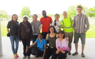 A Fruit Tree Care Dream Team in Toronto's San Romanoway