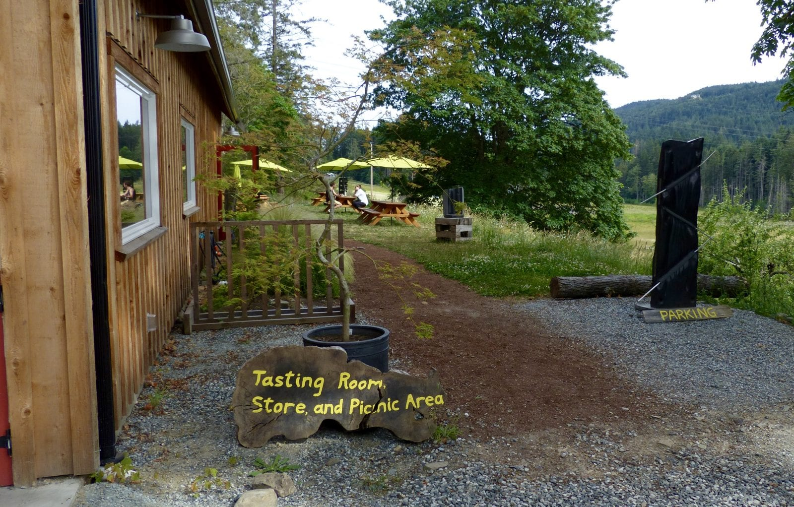 Salt Spring Wild Cider has cider tastings in their tasting room. They have also planted an orchard of cider apple trees that they grafted themselves.