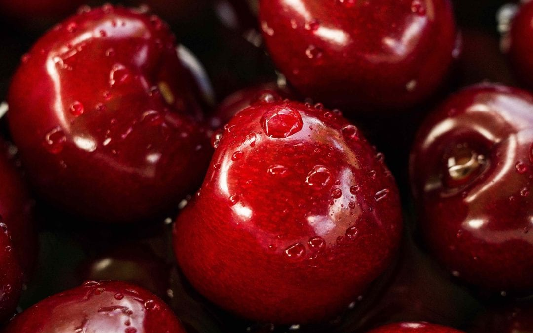 Dwarf cherry tree or cherry shrub? Which is better for your garden?