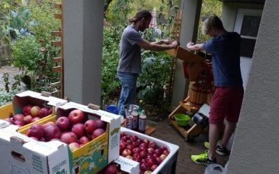 Pressing Apple Cider: A Family Affair