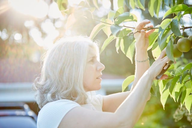 Grower Profile: Jeanne Calabrese